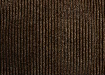 Ковролин грязезащитный полоса