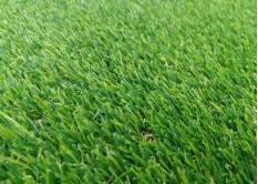 Искусственная трава Premium Natural 20 мм