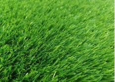 Искусственная трава Premium Green 35 мм